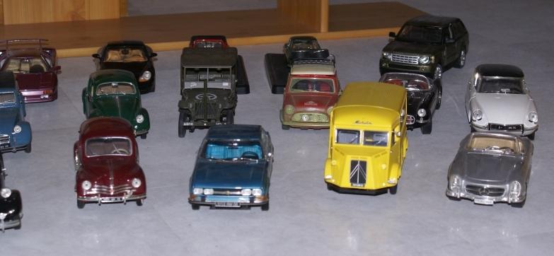 Mes miniatures Dsc06017