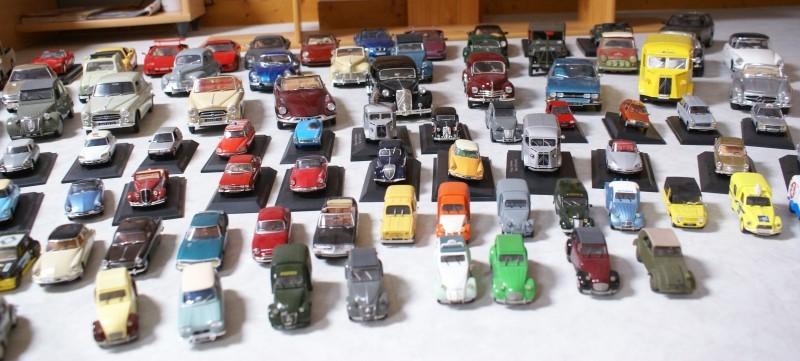 Mes miniatures Dsc06020