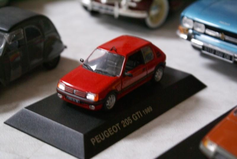 Mes miniatures Dsc06023