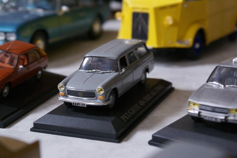 Mes miniatures Dsc06024