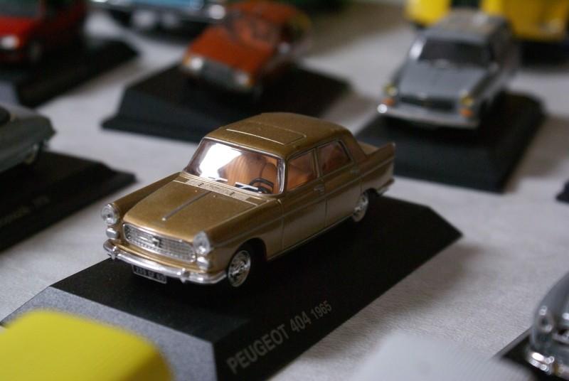 Mes miniatures Dsc06025
