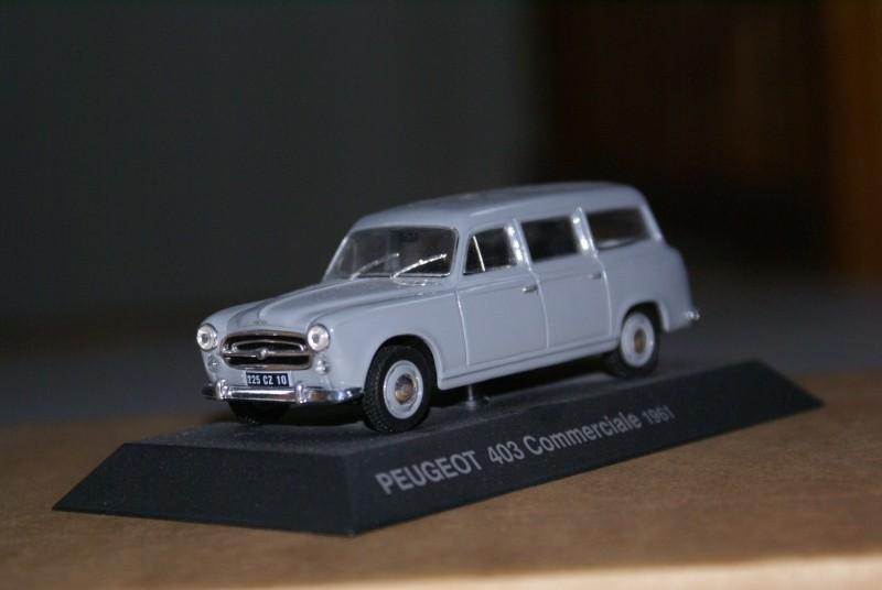 Mes miniatures Dsc06026