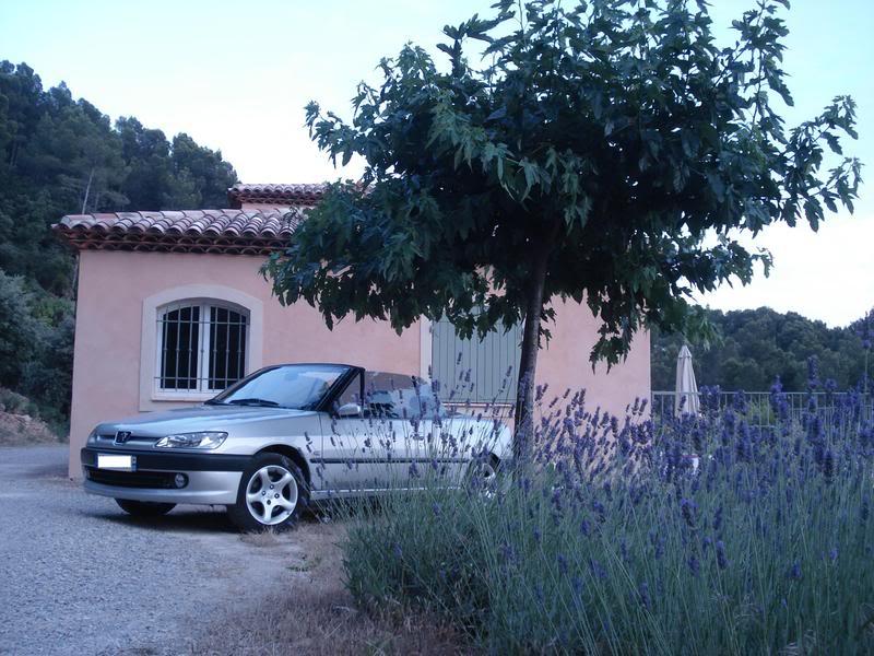 [ FOTOS ] Fase 3 - 2000 - Gris Thallium - El cabrio de Marco Dsc09412