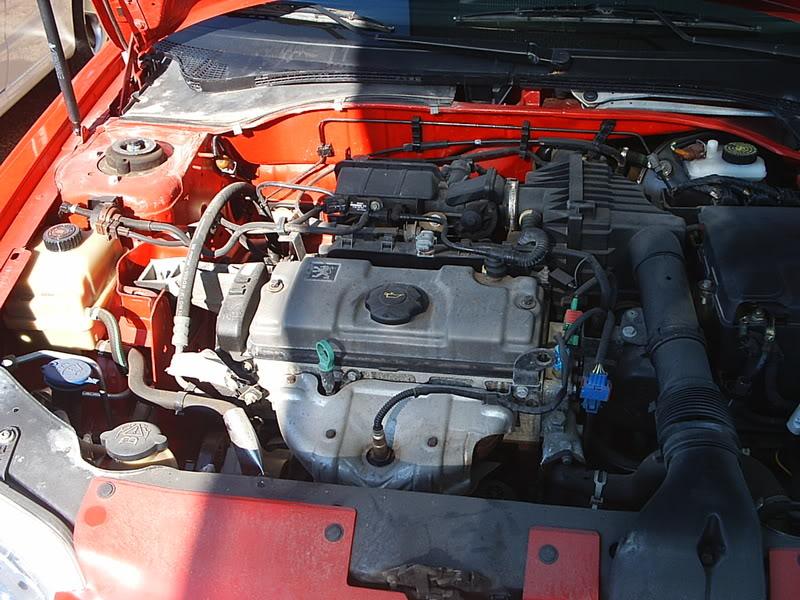 [ MOTORES ] Fase 3 - Motor 1,6l 100cv 2001 Pic_0012