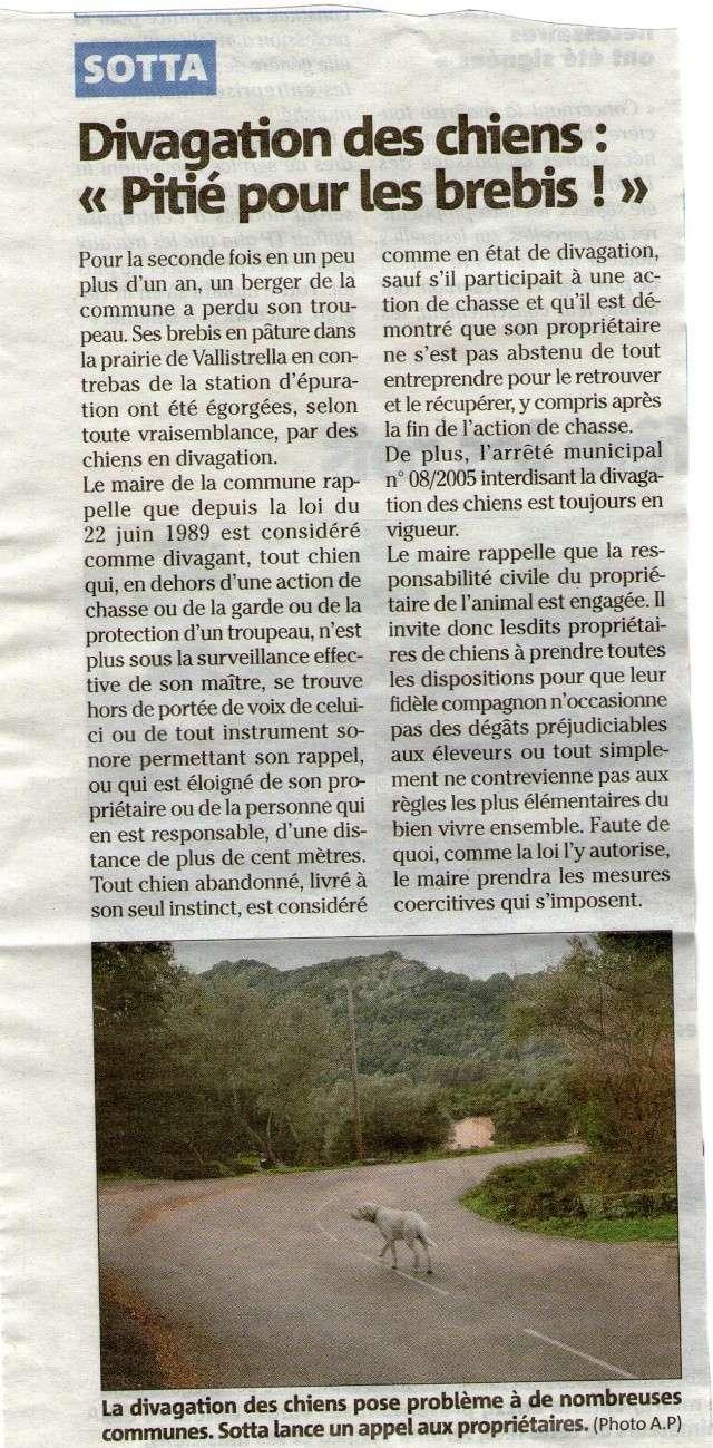 article du 24.1.2013 24_1_110