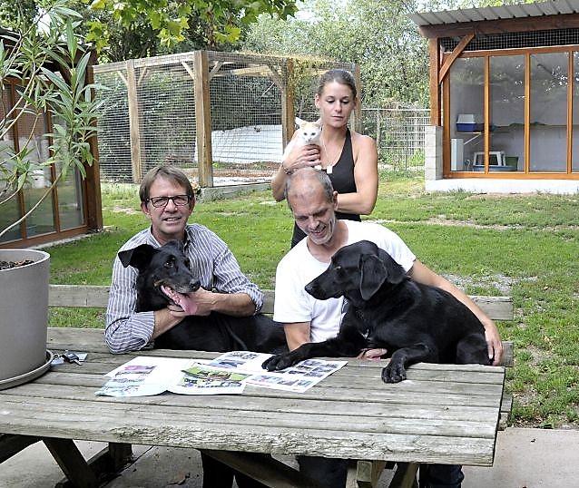 De nouveaux travaux pour accueillir les animaux abandonnés  Refuge10