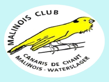 Comment joindre le club technique de Malinois Club_m10