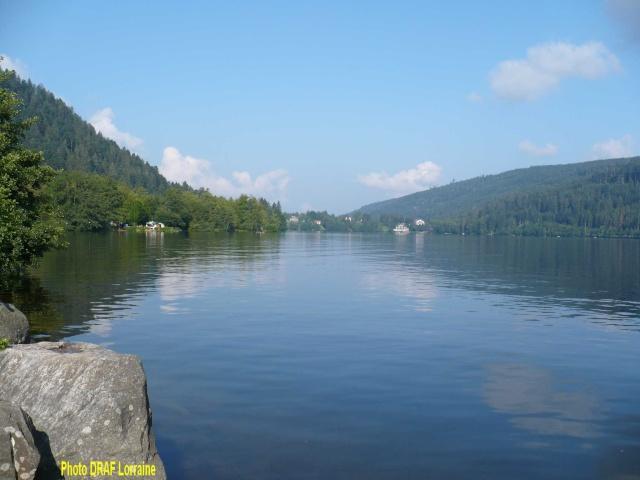 Bienvenue dans les Vosges 14_lac10