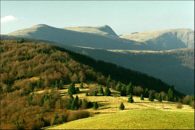 Bienvenue dans les Vosges 4252-110