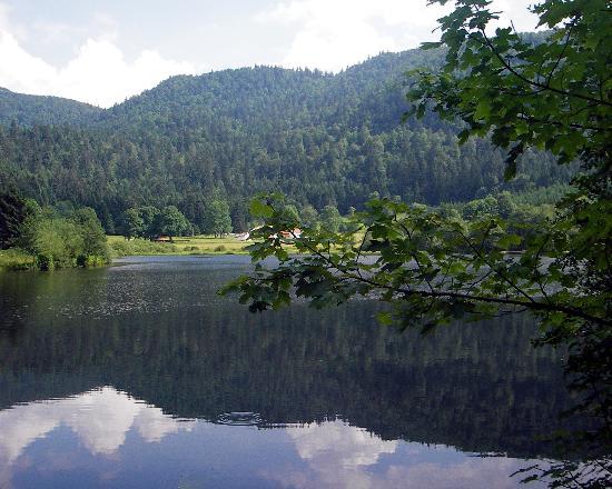 Bienvenue dans les Vosges Lac-re10