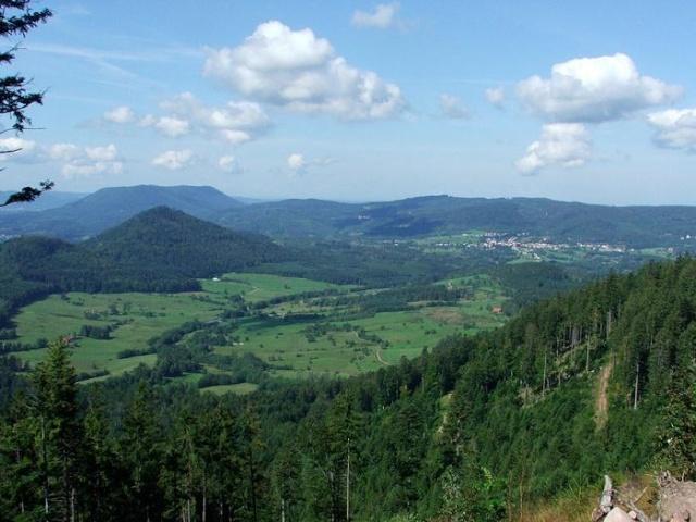 Bienvenue dans les Vosges Vosges11