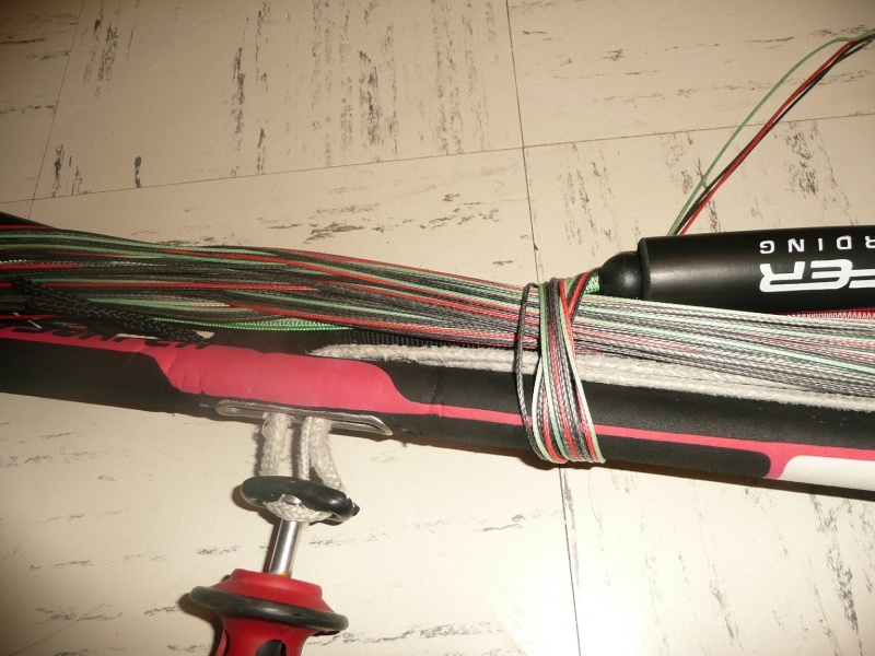 [VENDUE] Flysurfer Speed 3 21m (DLX) P1040730