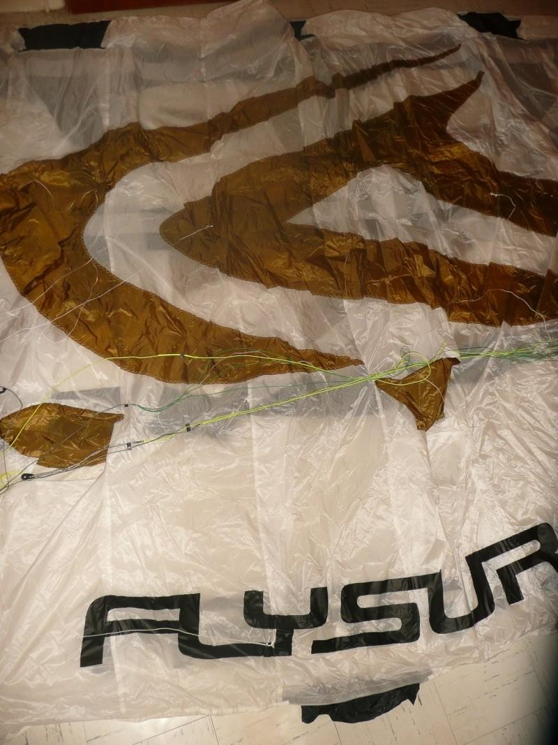 [VENDUE] Flysurfer Speed 3 21m (DLX) P1040812