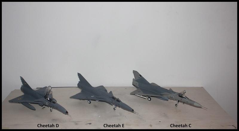 Feulements de Cheetah. Cheeta17