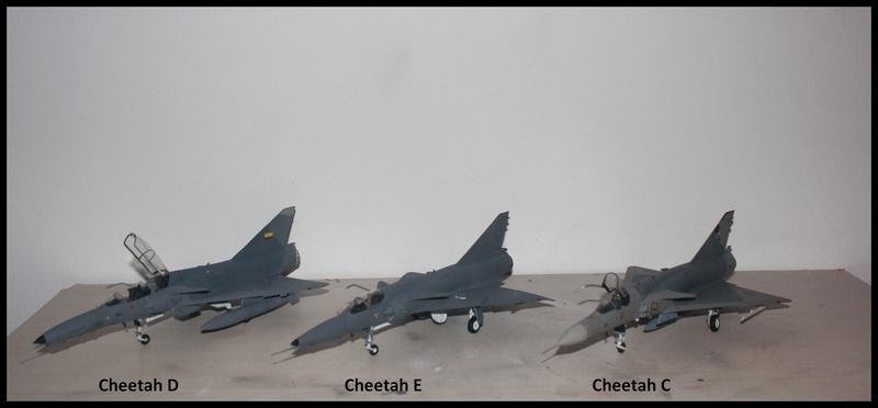 Feulements de Cheetah. Cheeta19