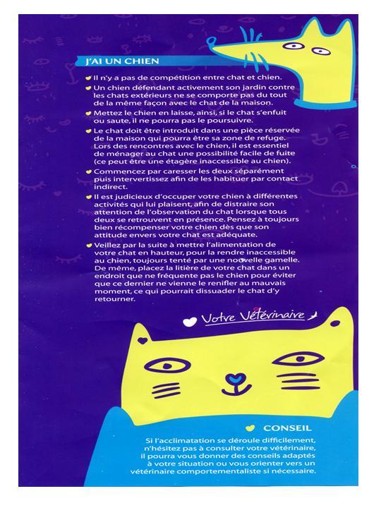 Mettre un nouveau chat en contact avec ses chats Diapos12