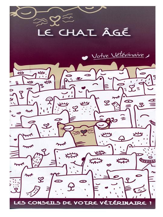 fiche conseils véto : le chat âgé Diapos16