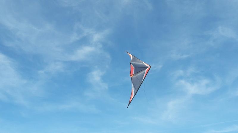Le Flamingo, disponible en novembre prochain Flamin10