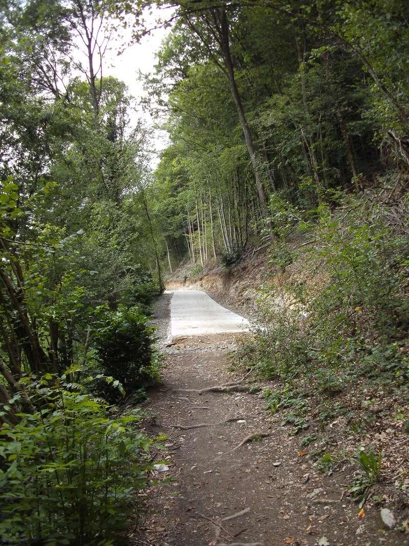 RAVeL 5 Ourthe Liege - Durbuy - Itinéraire N°7 - Sur la route des Ardennes - Page 4 Combla10