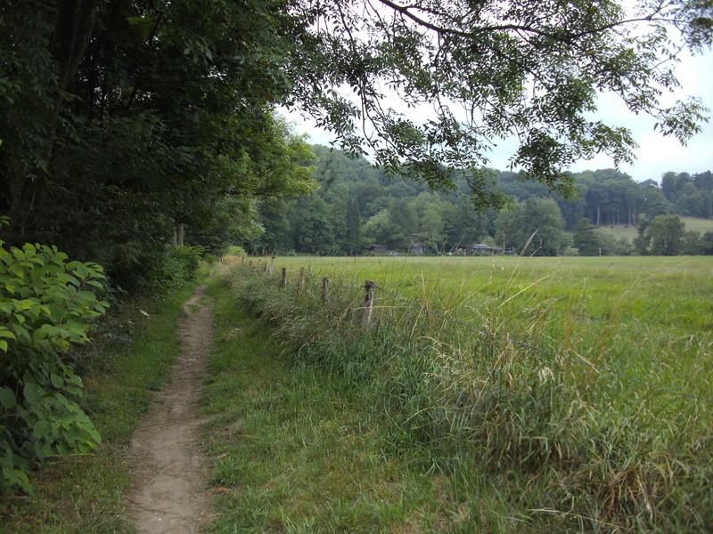 RAVeL 5 Ourthe Liege - Durbuy - Itinéraire N°7 - Sur la route des Ardennes - Page 4 Hony_c11