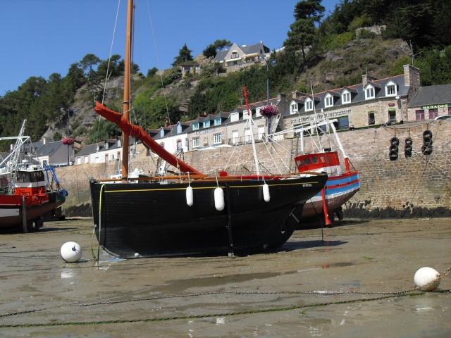 Le Cap Fréhel (22) Sdc11211