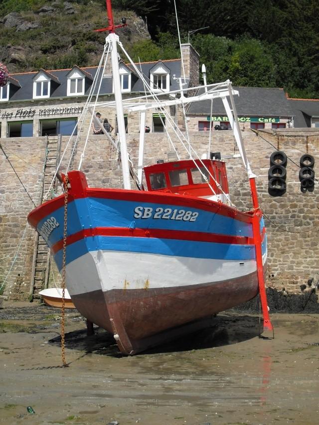 Le Cap Fréhel (22) Sdc11212