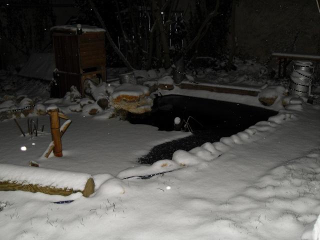 Votre photo pour Janvier 2010 - Page 2 Sdc12315