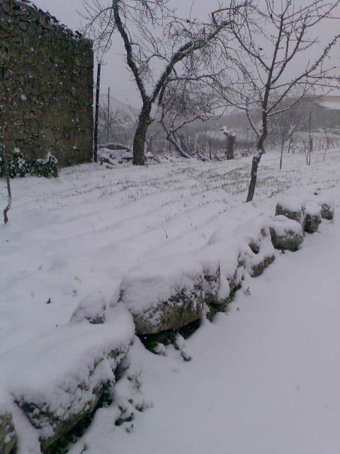 Castedo Branquinho/ Neve - Página 2 Img03410