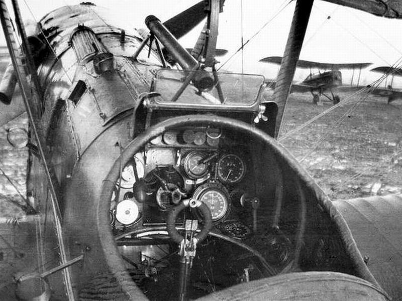 RAF S.E.5a / Merit, 1:24 Merit_10