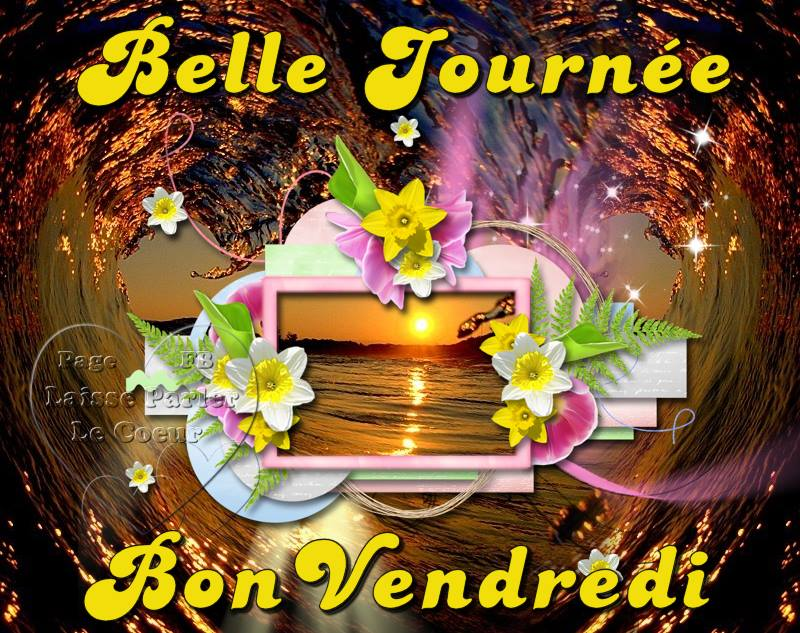 Bonjour du jour et bonsoir du soir - Page 5 Vendre11