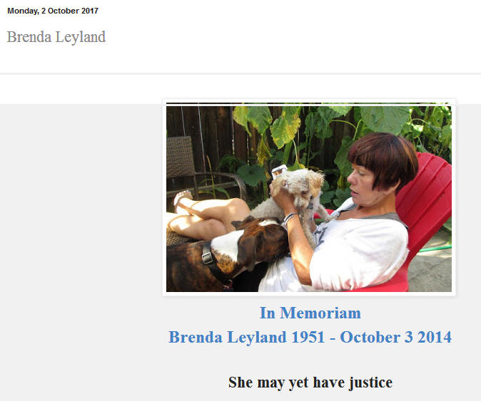 Brenda Leyland - Hounded to death by SKY News, died 4 October 2014 - LEST WE FORGET Bl11