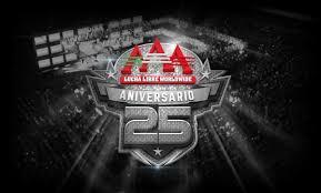 AAA Triplemania XXV (Carte et Résultats) Images10