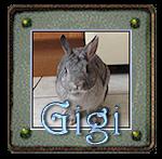 Suggestion pour avatar Gigi_410