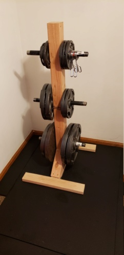 Home gym equipment must-haves - Page 2 20200514