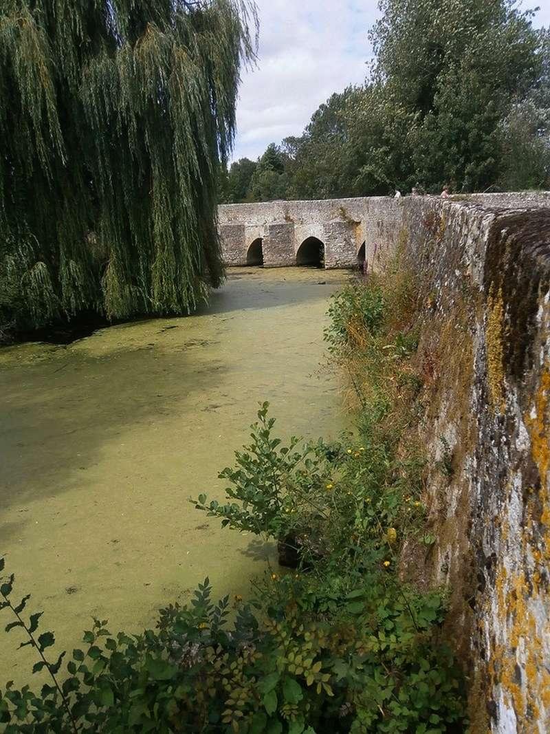 Images de vos vieux Flats et vieux ponts... - Page 30 Sans_t21