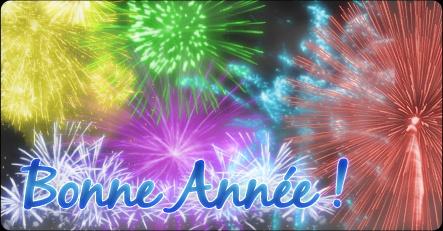 Annonce du 29 décembre 2009 Untitl10