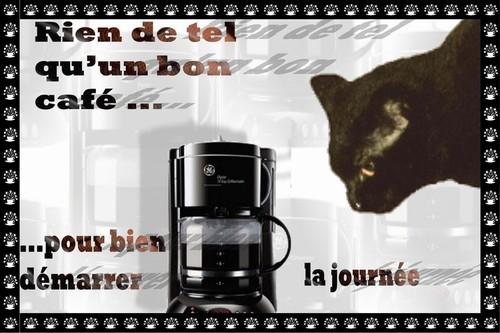 Bonjour, bonsoir..... - Page 37 45d3d610
