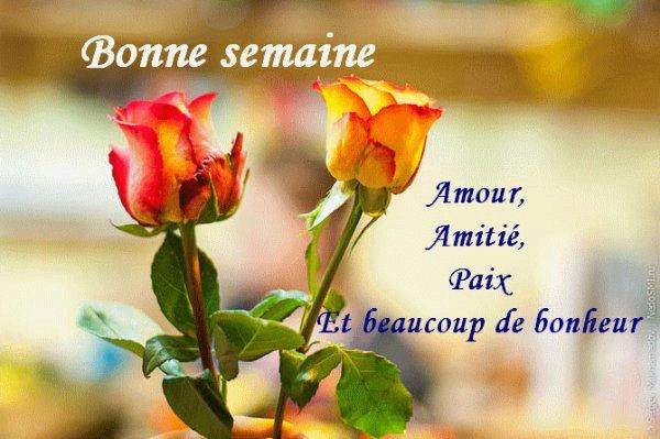 Bonjour, bonsoir..... - Page 39 9347411