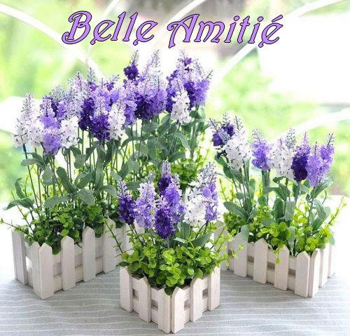 Bonjour, bonsoir..... - Page 6 9535710