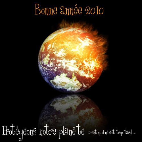 Bonne Année 2010 Proteg10