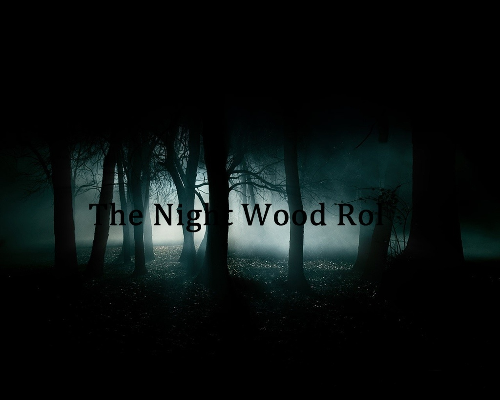 The night wood
