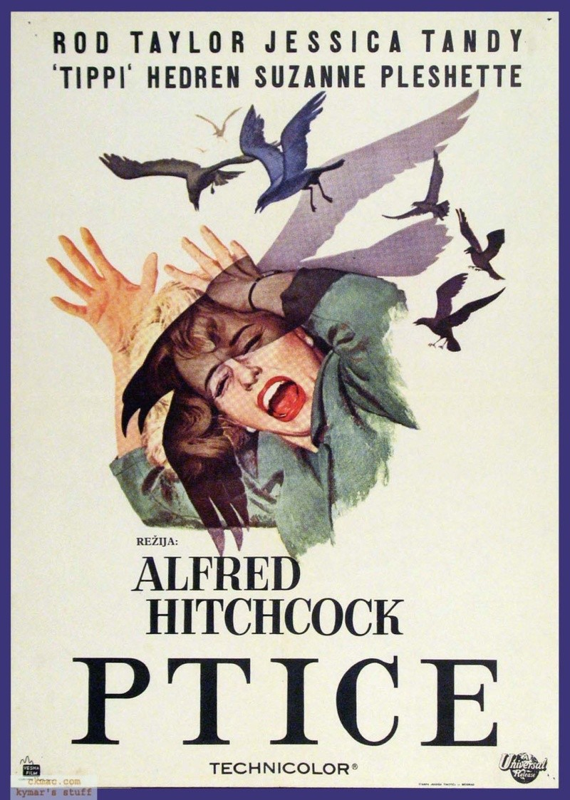 Ptice (The Birds) (1963) B03-1510