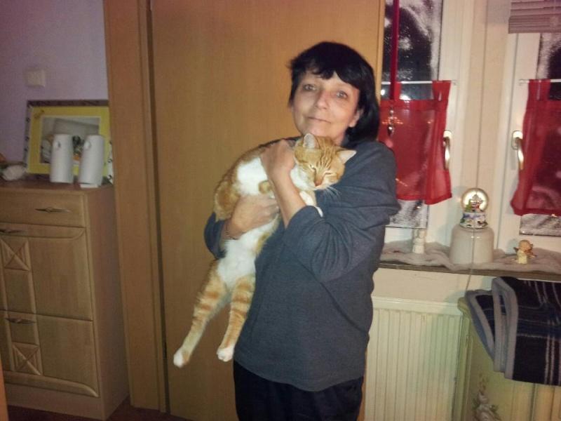 Nouvelles de nos chats partis en Allemagne le 7 décembre 2012  42560710