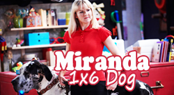 Get dressed for the Miranda Marathon !  Mirand14