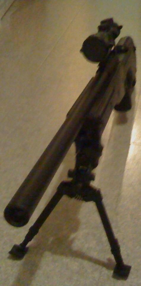 achat du 14/01/10 Sniper10