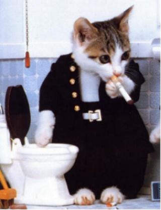 Hommage à Catwoman Pri_en10