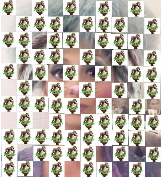 qui suis je Martin 1er juillet trouvé par Martine - Page 3 Qui_su17