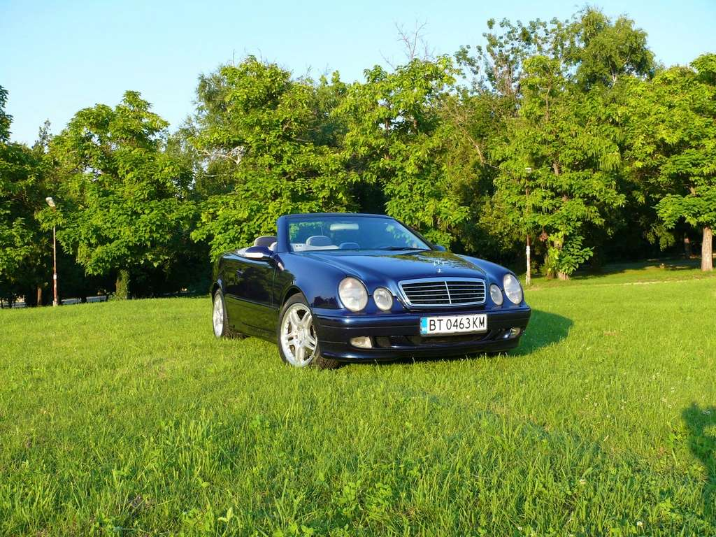 Mes voitures en photos STIHLMI16 ® - Page 6 P1060217
