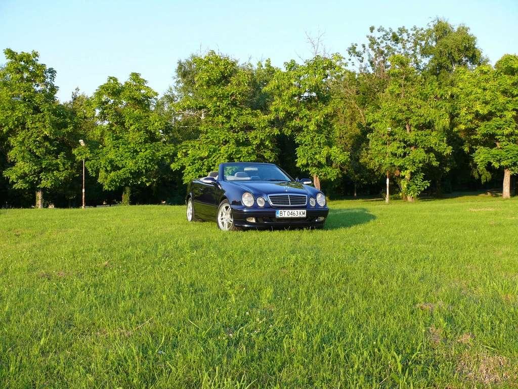 Mes voitures en photos STIHLMI16 ® - Page 6 P1060220