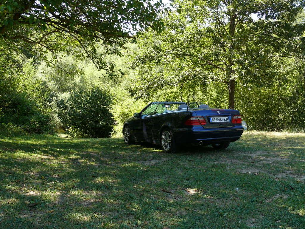 Mes voitures en photos STIHLMI16 ® - Page 6 P1060317